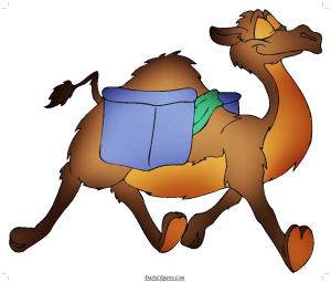 Camel taking Luggage Image
