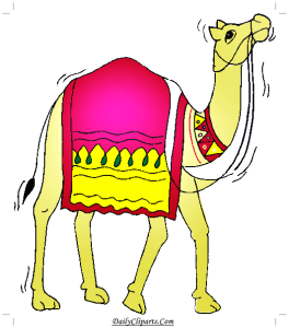 Camel with sitting cover Image