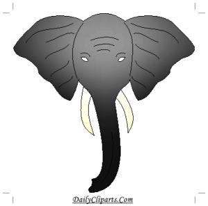 Front Elephant Face Image