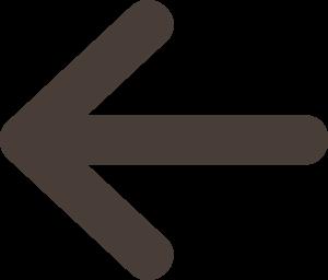 Left Arrow Medium Thin Size