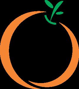 Orange Color Line Art Image Icon