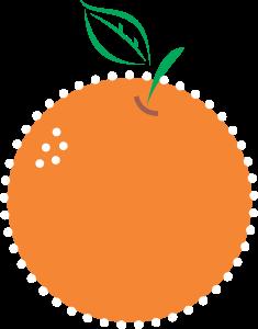 Orange Fruit Logo Icon