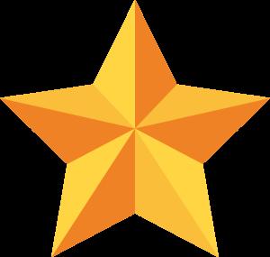 Star Image Icon