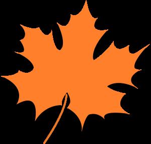 Autumn Leaf Image