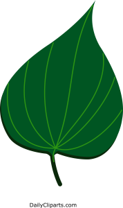 Paan Leaf Clipart Image Icon for free Download Print