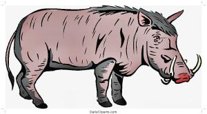 Wild Pig Clipart